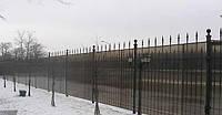 Забор сварной под ковку