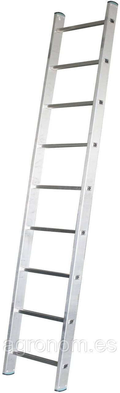 Лестница iToss 7109 9-ступеней