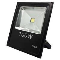 Светодиодный прожектор 100 w  Feron LL-841 Led