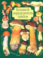 Юдин. Большой определитель грибов, 978-5-17-009351-9, 9785170093519
