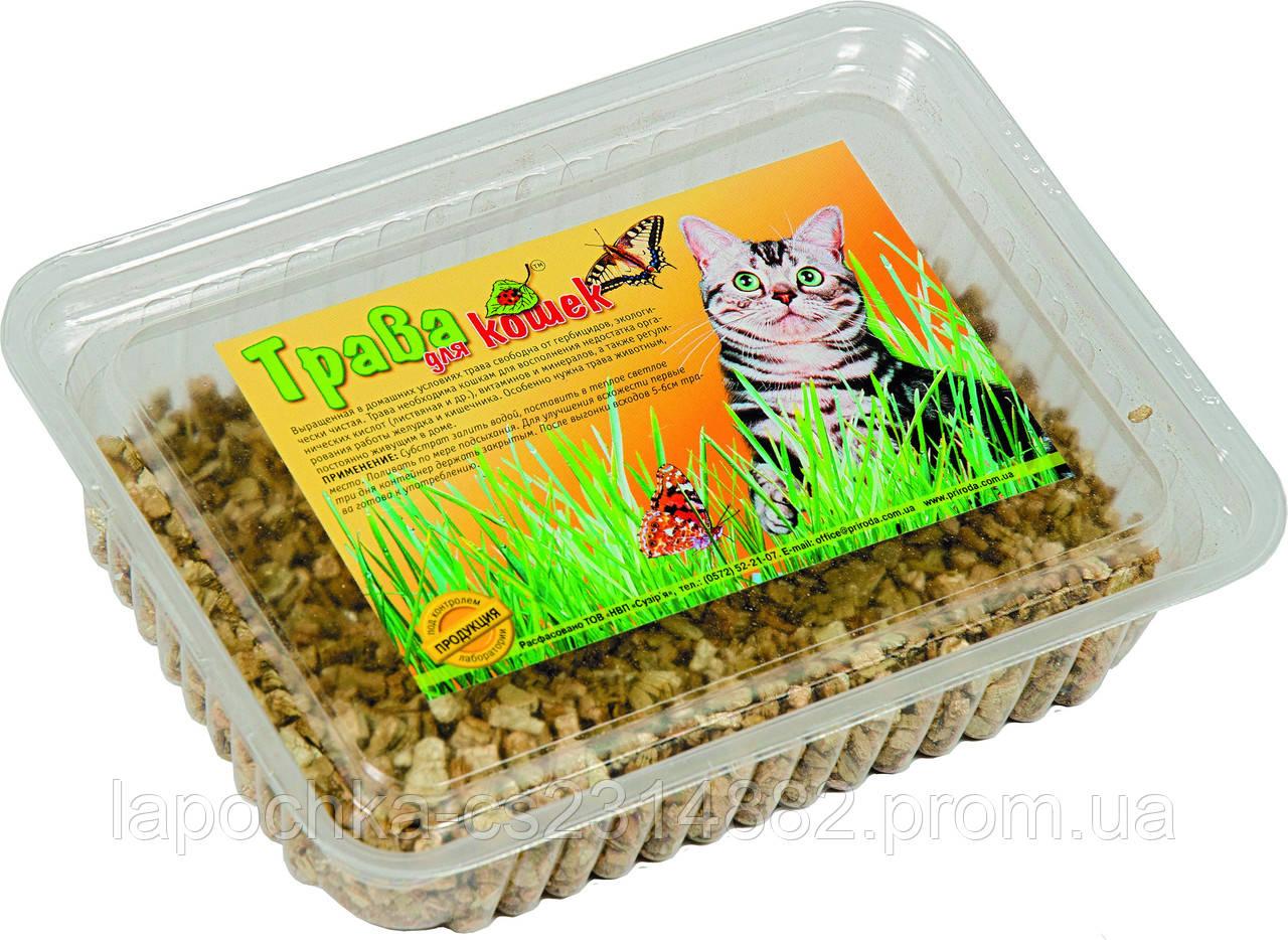 Трава Природа для кошек, 100г
