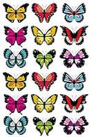 Вафельная картинка для капкейков Бабочки разноцветные р 20Х14