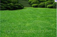 Королевский газон - сверхкрасивый газон от производителя Германии, фото 1