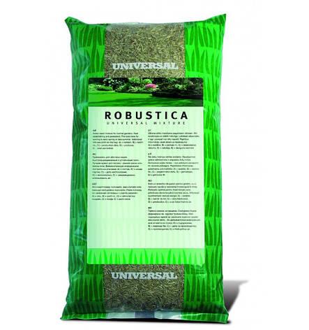 Семена газона ROBUSTICA(РОБУСТИКА) 20 кг DLF-TRIFOLIUM, фото 2