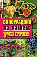 Виноградник на вашем участке, 978-5-386-04110-6