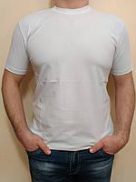 мужская белая футболка HECTOR