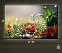 Картина с подсветкой Весенний подснежник 29х45