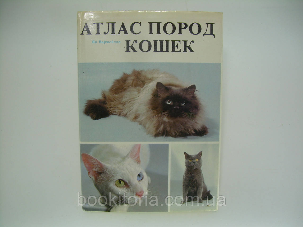 атлас пород кошек с фото