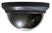 Видеокамера  AVTech AVC-152P