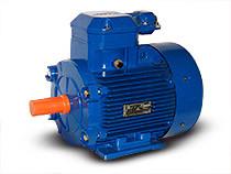 Взрывозащищенный электродвигатель 4ВР (АИМ) 80