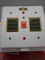 Инкубатор Квочка Ми-30-1-ЭС (ламповый)