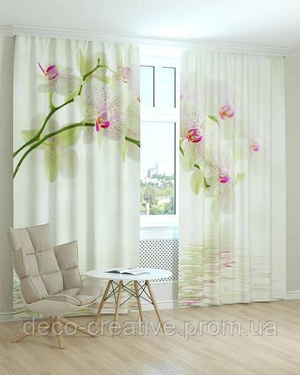 Фотошторы орхидеи белые над водой