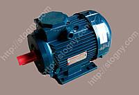 Электродвигатель 3,0*1500