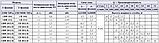 Центробежный промышленный насос Speroni CB 303/A (трёхфазный), фото 3