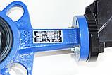 Затвор поворотный Баттерфляй AYVAZ тип KV3 Ду100 Ру16 диск нержавеющая сталь , фото 5