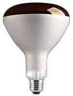 Инфракрасные лампы  для обогрева молодняка 250R/IR/R/E27 240V GE 1/10 MIH