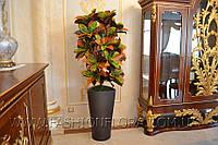 Искусственное растение Кротон
