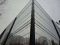 Сетка сварная оцинкованная с полимерным покрытием Рубеж 5/5 забор для дачи