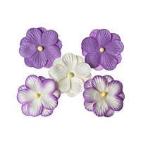Квіточки братки, фіолетові, 5 шт/уп