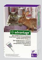 Капли на холку Адвантейдж 80 для кошек и кроликов 4-8кг против эктопаразитов
