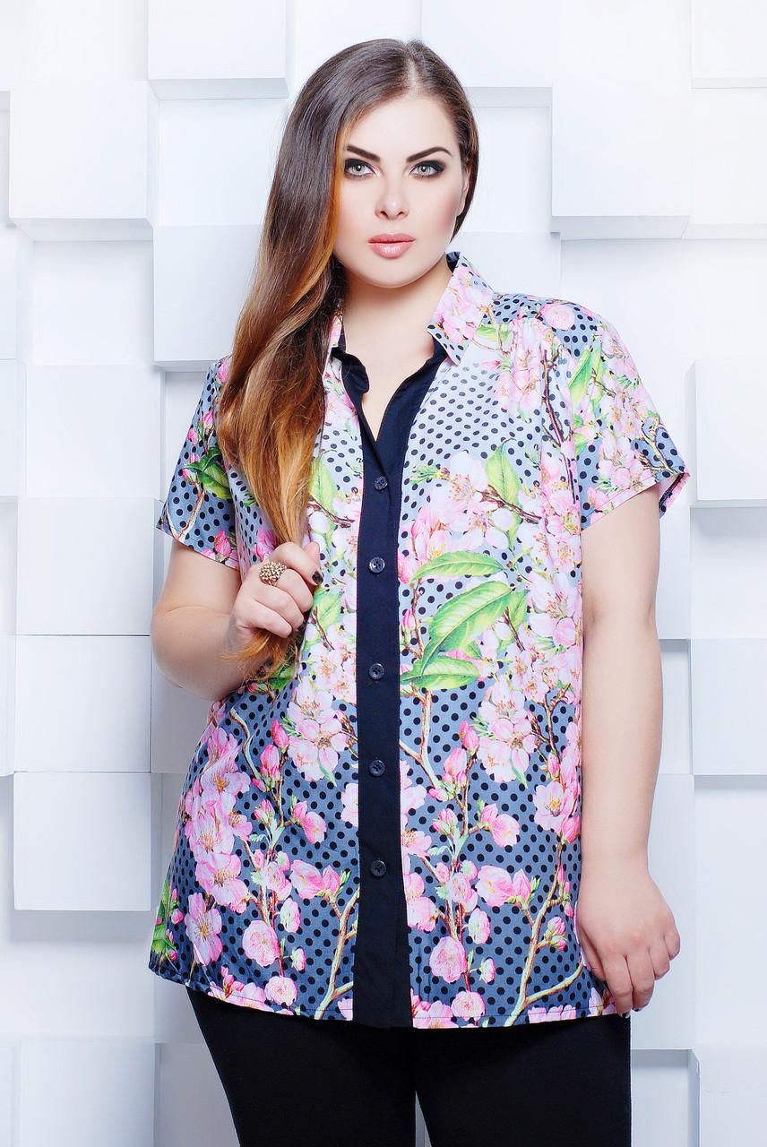 Нежная женская блуза на пуговицах с отложным воротником и коротким рукавом. Гарантирует нежный и незабываемый