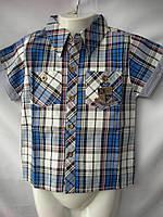 Рубашка детская мальчик лето