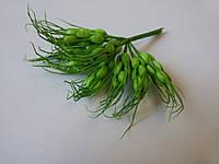 Колоски зелёные