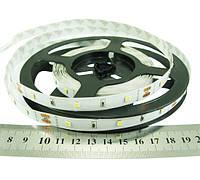 Нейтрально біла світлодіодна стрічка RN0030TA-A 2835-30-IP33-NW-10-12 6Вт 12вольт 468лм Рішанг 7489