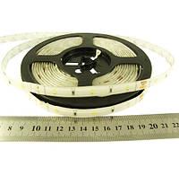 Світлодіодна стрічка 12вольт 6Вт 284лм 6500К RN6030TA-A 2835-30-IP65-CWd-10-12 холодно біла 7608