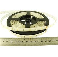 Світлодіодна стрічка холодно біла RN6030TA-A 2835-30-IP65-CWd-10-12  6Вт 12вольт 7608