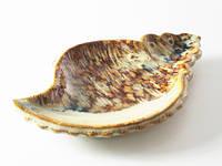 Блюдце керамика Ракушка