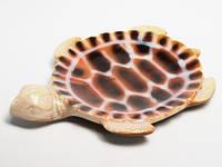 Блюдце из керамики Черепаха