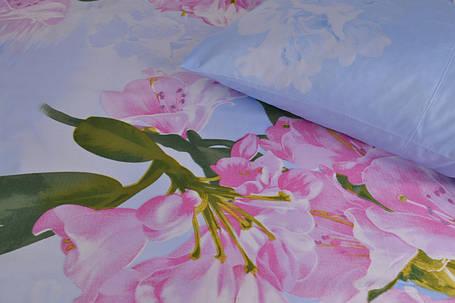 Двуспальное постельное белье (AN201/137), фото 2