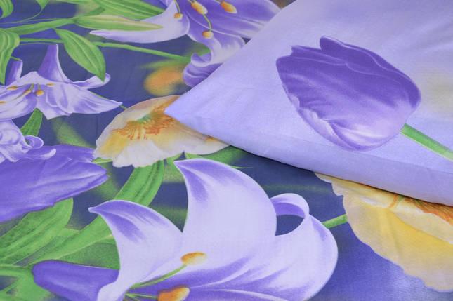 Двуспальное постельное белье (арт. AN201/146), фото 2