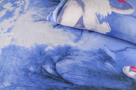 Двуспальное постельное белье (AN201/154), фото 2