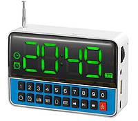 Радиоприемник с часами WS 1513