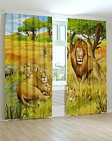 Фотошторы в детскую комнату семейство львов