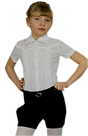 Блузка Марина кор.рукав 116-152 см