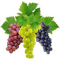 Для винограда, микроудобрения для органического земледелия