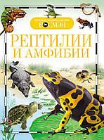 "Росмен ДЭР ""Рептилии и амфибии"" А-5, фото 1"