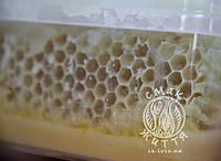 Мед у сотах (липа+акація) (250г)