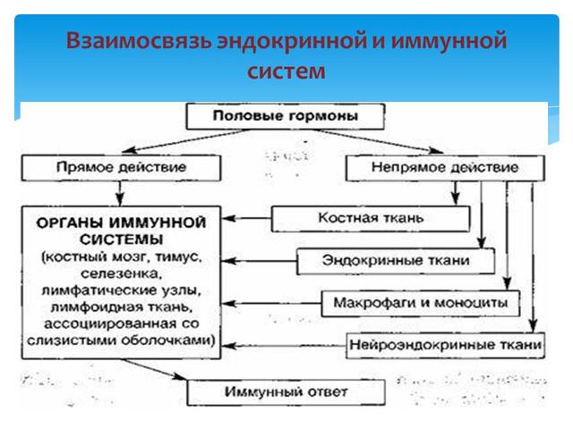 гинеколог одесса , андреев сергей владимирович - лучший гинеколог в одессе