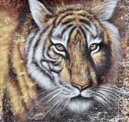 Алмазна вишивка Т-009 Тигр 40*40 см, камені