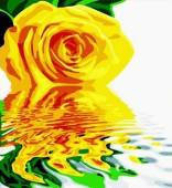 Алмазная вышивка К-064 Роза желтая 30*40 см, камни