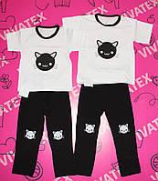 Комплект для девочек Кошка лосины белая/цветная интерлок