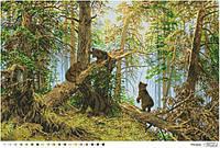 Барвиста Вишиванка ТП-015 Пейзаж Утро в сосновом бору, схема для вышивания бисером