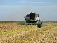 Жатка ЖВУ-Р для уборки риса