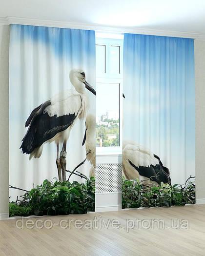 Фотошторы птицы аисты