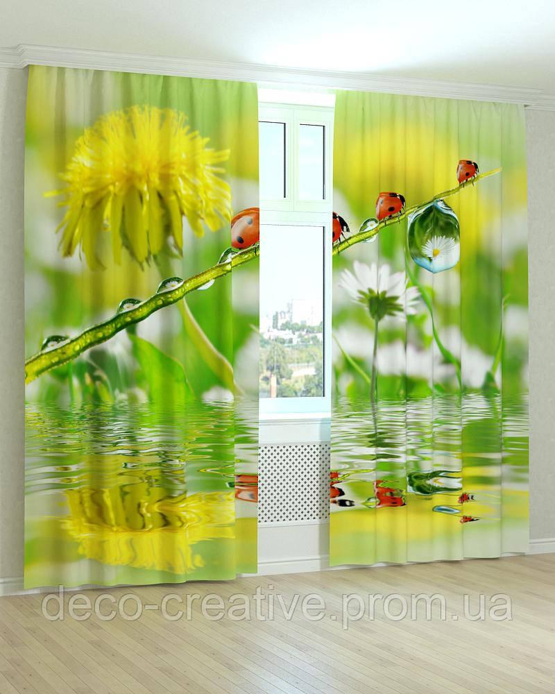 Фотошторы божья коровка на цветке