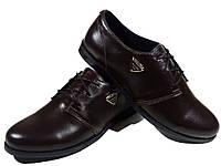 Туфли женские комфорт натуральная кожа шоколадные на шнуровке (Т 09 )